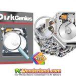 DiskGenius Professional 5.0.0.589 Portable Free Download
