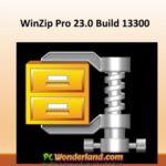 WinZip Pro 23.0 Build 13300 Free Download
