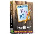 Poedit Pro 2.2 Free Download