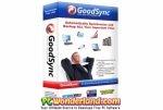 GoodSync Enterprise 10.9.32.2 Free Download