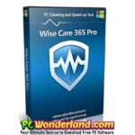 Wise Care 365 Pro 5.3.9 Build 536 Free Download