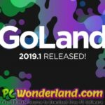 JetBrains GoLand 2019 Free Download