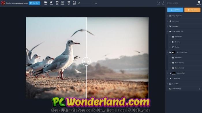 Topaz DeNoise AI 2 Free Download 4