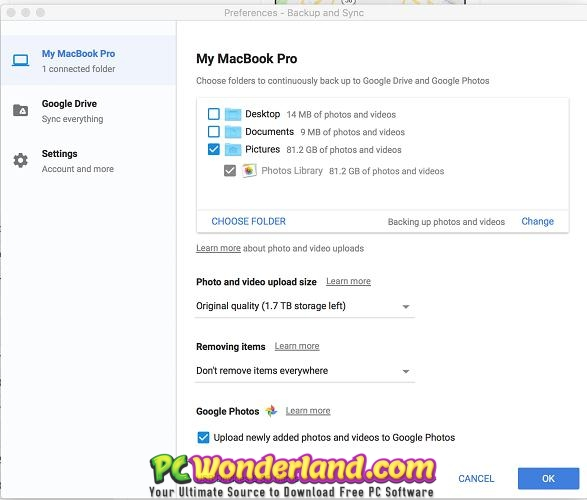 Google Backup and Sync 3.51.3307.8076 Free Download 4