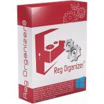 Reg Organizer 8.70 Free Download